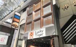 Yoko_thumb_22.lucky_tiger